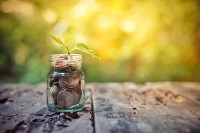savings-401(k)
